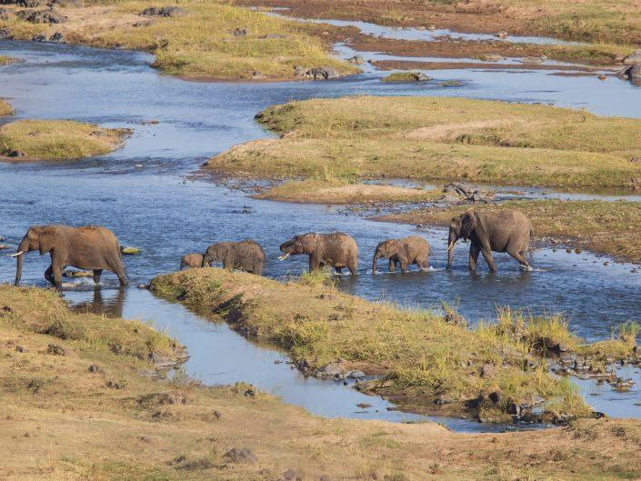 Kruger Park July 2019